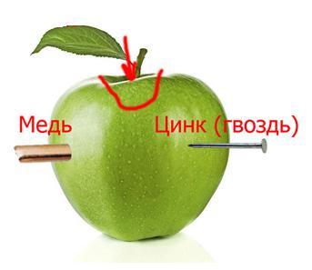 гальванический элемент из яблока